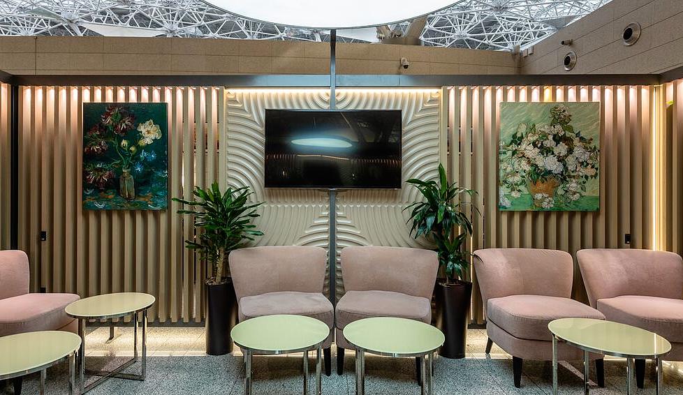Заказ  VIP зала аэропорт Внуково терминал А